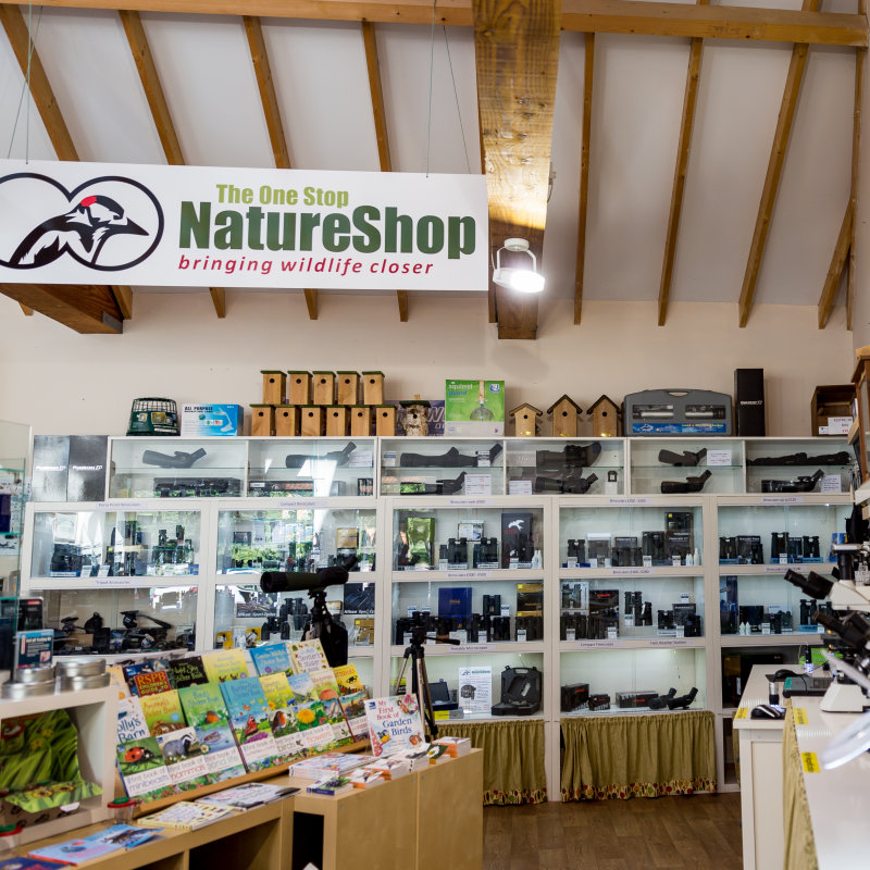One Stop Nature Shop, Burnham Deepdale, Norfolk - Activities - The wildlife observation experts specialising in binoculars, telescopes, microscopes, wildlife camera systems, bird food, feeders and much more. | Brancaster Staithe & Burnham Deepdale, North Norfolk Coast